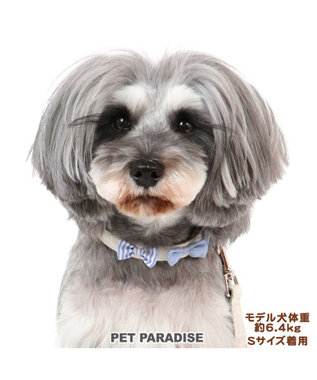PET PARADISE ペットパラダイス りぼん 首輪  ペットSM 〔中型犬〕 ベージュ