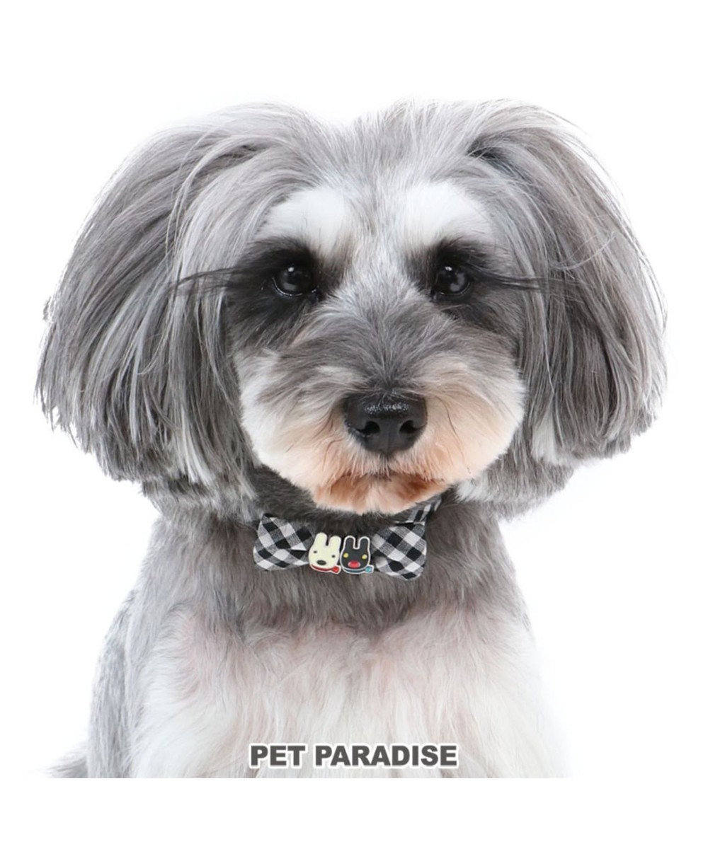 PET PARADISE リサとガスパール ギンガムチェック 首輪 ペット3S 〔小型犬〕 黒