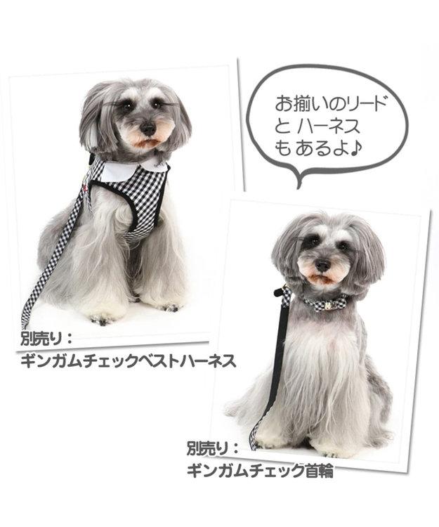 PET PARADISE リサとガスパール ギンガムチェック リード SS~S〔小型犬〕