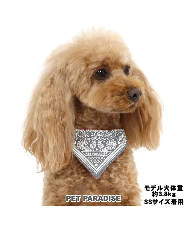 PET PARADISE ペットパラダイス バンダナ 首輪 ペットS 〔小型犬〕 カーキ