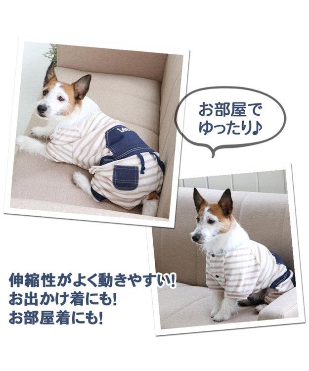 PET PARADISE Lee パイル ボーダー ロンパース 〔超小型・小型犬〕