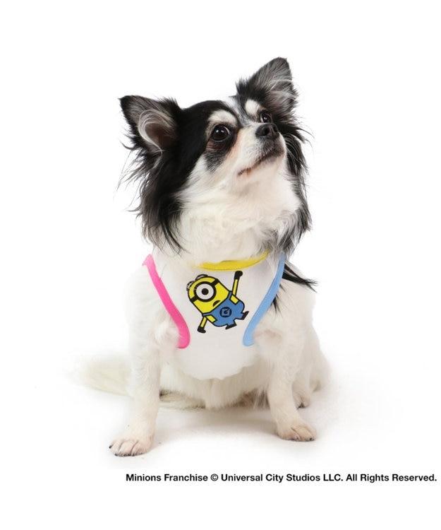 PET PARADISE ミニオン フェイス Tシャツ 〔超小型・小型犬〕 白~オフホワイト