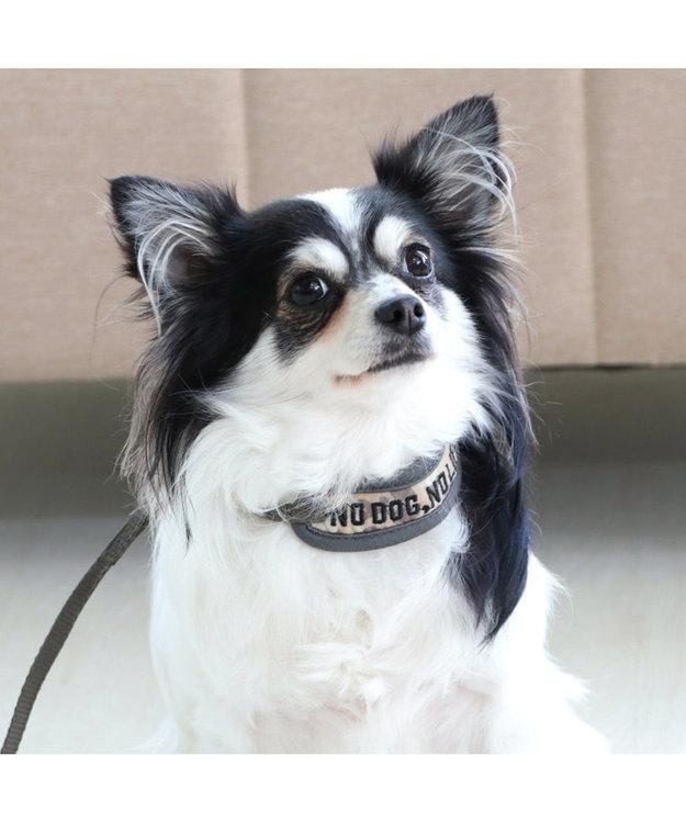 PET PARADISE ペットパラダイス リード付き首輪 迷彩 4S~SS〔超・小型犬〕