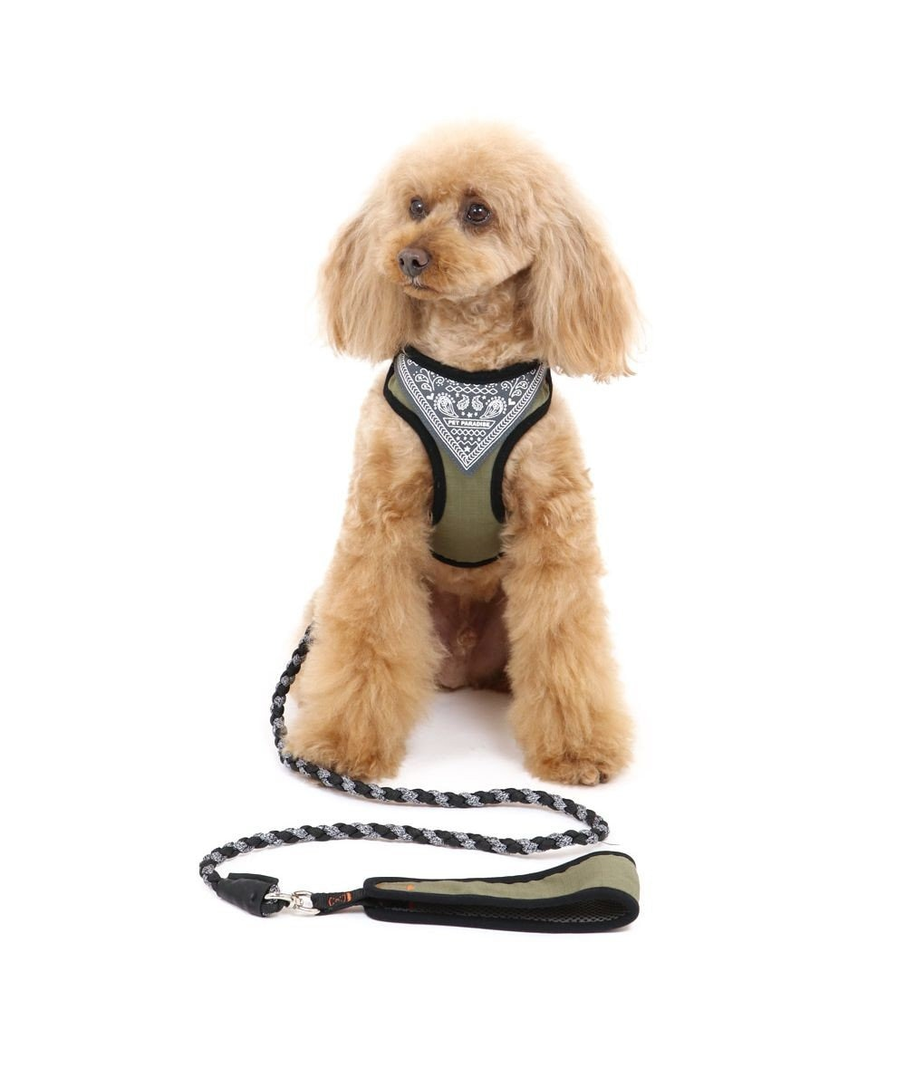 PET PARADISE 犬 ハーネス リード ハーネスリード S〔小型犬〕 編み紐リード 小型犬 おさんぽ おでかけ お出掛け おしゃれ オシャレ かわいい カーキ