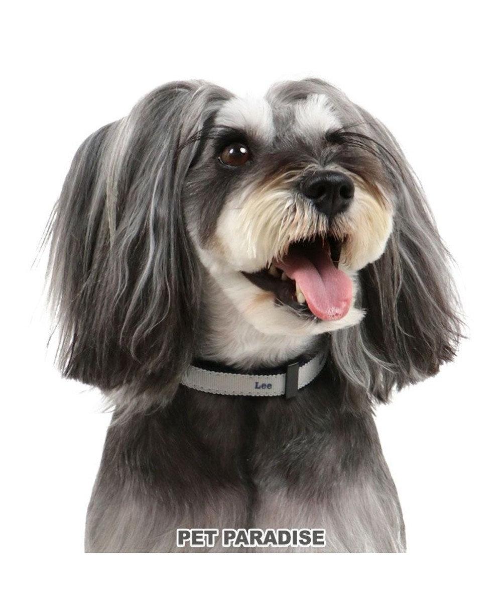 PET PARADISE 犬 首輪 Lee 【S】 チャーム付き 小型犬 おさんぽ おでかけ お出掛け おしゃれ オシャレ かわいい 紺(ネイビー・インディゴ)