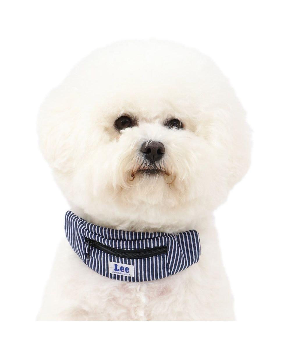 PET PARADISE 犬 首輪 ペットパラダイス Lee ロープロゴ柄 ヒッコリーポーチ付き 首輪 3S〔小型犬〕 紺(ネイビー・インディゴ)