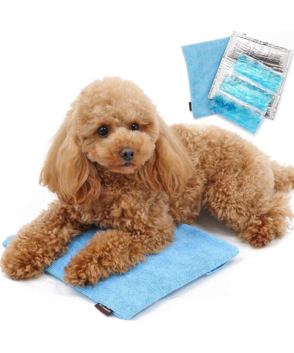 PET PARADISE ペットパラダイス ペットキャリー カート用ひえひえクールバッグ 水色