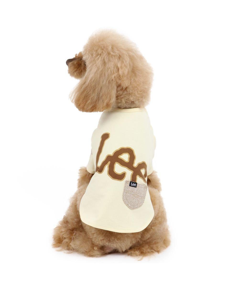 PET PARADISE 犬 服 Lee Tシャツ 〔小型犬〕 ビッグロゴ  犬服 犬の服 犬 服 ペットウエア ペットウェア ドッグウエア ドッグウェア ベビー 超小型犬 小型犬 ベージュ
