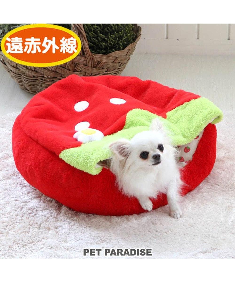 PET PARADISE 犬 ベッド おしゃれ 寝袋 カドラー (50cm) いちご 丸型 赤 犬 猫 ベッド 小型犬 かわいい ふわふわ ネット限定 赤