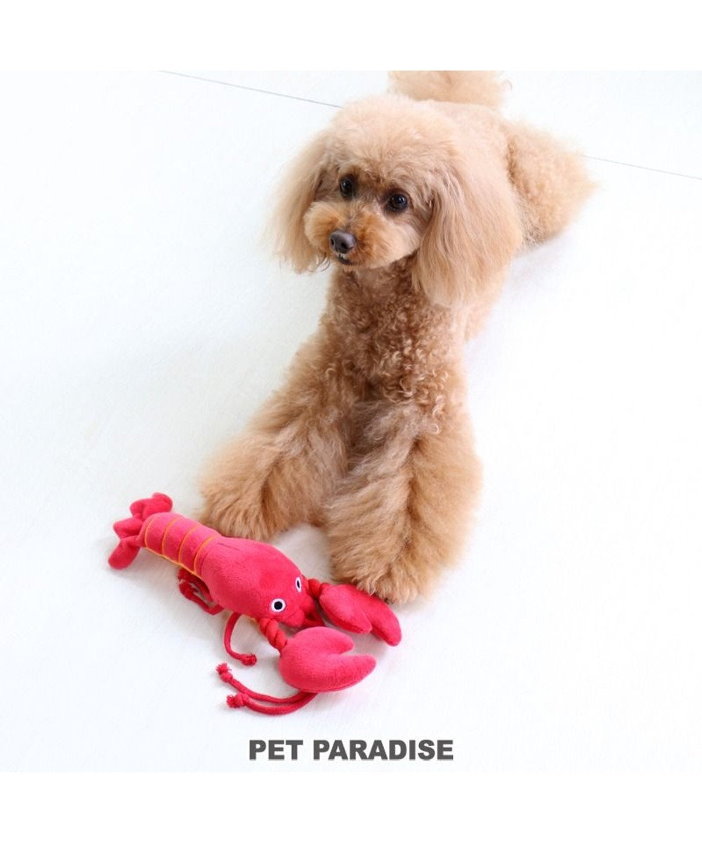 PET PARADISE 犬用品 ペットグッズ 犬 おもちゃ ペットパラダイス 犬 おもちゃ 伊勢えび | おうちで遊ぼう おうち時間 犬 おもちゃ オモチャ ペットのペットトイ 玩具 TOY 小型犬 おもちゃ かわいい おもしろ インスタ映え 赤