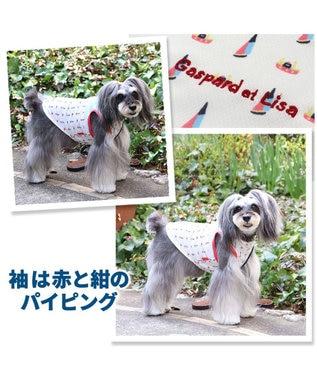 PET PARADISE ペットパラダイス リサとガスパール マリン 保冷剤付き ポケット クール タンクトップ 〔小型犬〕 超小型犬 小型犬 ひんやり 夏 涼感 冷却 マルチカラー