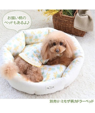 PET PARADISE ペットパラダイス ミモザ柄 タンクトップ 〔超小型・小型犬〕 黄