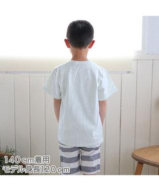 Mother garden しろたん Tシャツ 半袖 《かっぱ巻 まきまきの巻柄》 緑色 サイズ 100 120 140 子供 キッズ キャラクター アザラシ あざらし かわいい 男女兼用 女の子 男の子 マザーガーデン 黄緑