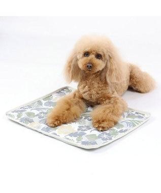 PET PARADISE 犬 春夏 クール 接触冷感 マット (44×35cm) ボタニカル柄 ジェルマット -
