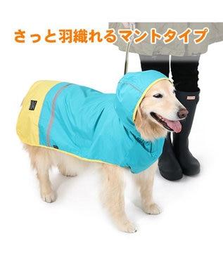 PET PARADISE 犬服 犬用品 ペットグッズ ペットウェア ペットパラダイス 切替レインマント 【中型・大型犬】 | 犬用 中型犬 大型犬 青緑