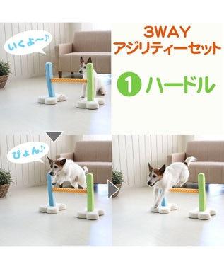 PET PARADISE 犬 トイ TOY ペットパラダイス アジリティ セット 訓練 ドッグアジリティ トレーニング マルチカラー