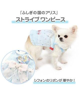PET PARADISE ディズニー アリス ストライプ ワンピース 〔超小型・小型犬〕 水色