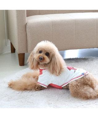 PET PARADISE 犬服 犬 服 ペットパラダイス スヌーピー 赤屋根 Tシャツ 〔小型犬〕 超小型犬 小型犬 白~オフホワイト