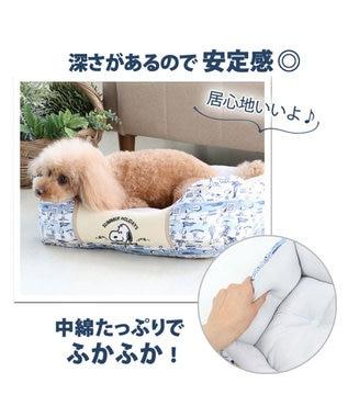 PET PARADISE 犬 春夏 クール 接触冷感 スヌーピー 四角カドラーベッド(57×45cm) サーフ柄 犬 猫 ベッド マット 小型犬 介護 おしゃれ かわいい ふわふわ あごのせ 水色