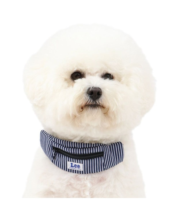 PET PARADISE 犬 首輪 ペットパラダイス Lee ロープロゴ柄 ヒッコリーポーチ付き 首輪 3S〔小型犬〕