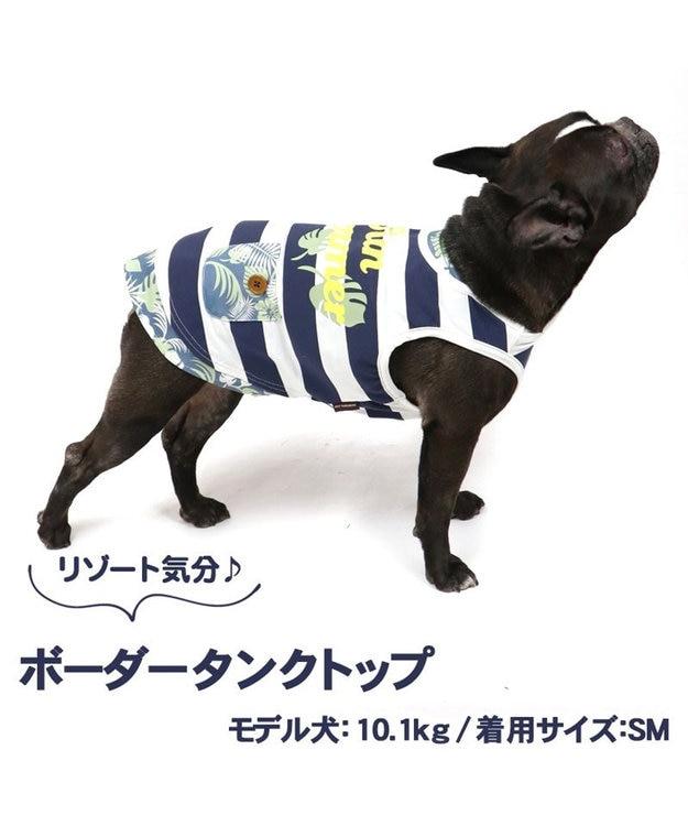 PET PARADISE 犬服 犬 服 ペットパラダイス ボーダータンク 接触冷感 虫よけ タンクトップ 〔中・大型犬〕 中型犬 大型犬 天竺 ひんやり 夏 涼感 冷却 吸水速乾 クールマックス