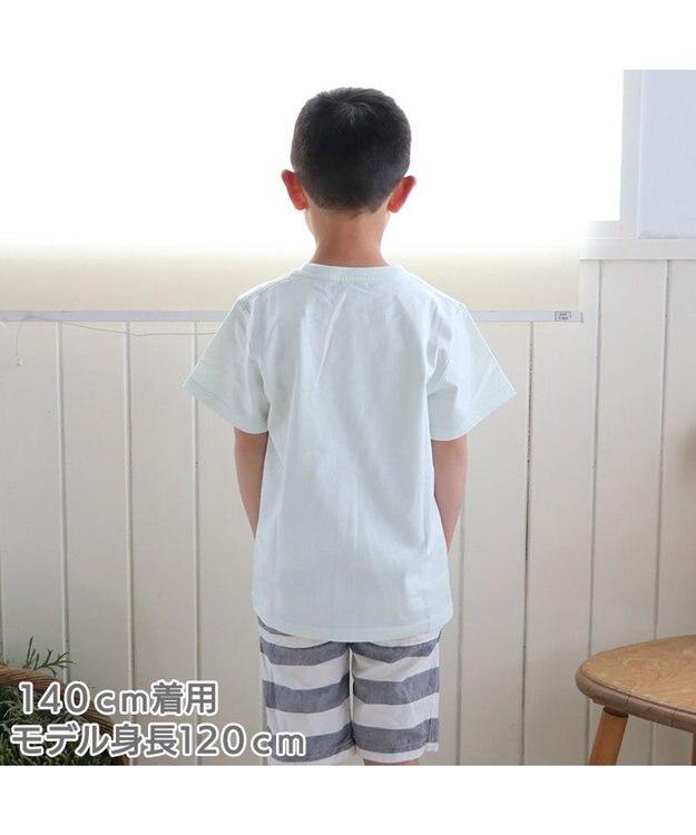 Mother garden しろたん Tシャツ 半袖 《かっぱ巻 まきまきの巻柄》 緑色 サイズ 100 120 140 子供 キッズ キャラクター アザラシ あざらし かわいい 男女兼用 女の子 男の子 マザーガーデン