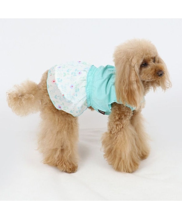 PET PARADISE ペットパラダイス 花柄 ワンピ―ス 水色 〔超小型・小型犬〕
