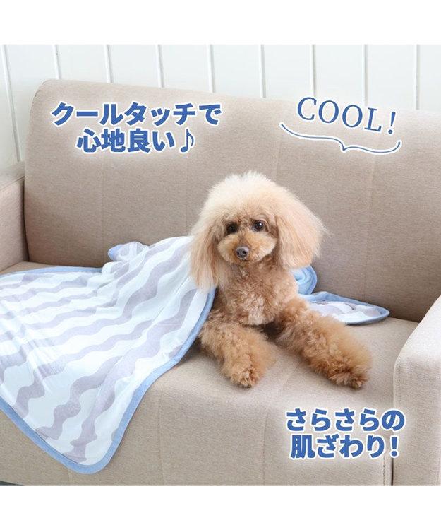 PET PARADISE 犬 春夏 クール 接触冷感 ブランケット (90×60cm) 波柄 灰 毛布 ひざ掛け ひんやり ひんやり 夏 冷却 冷感