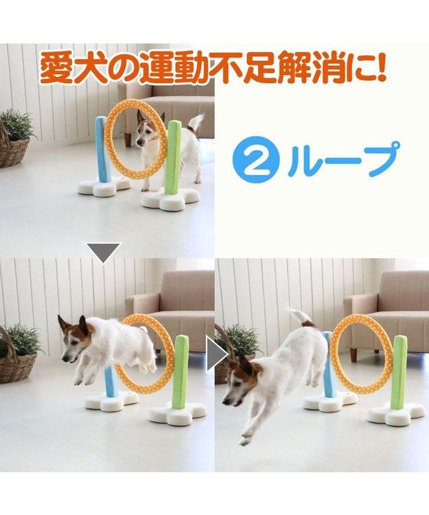 PET PARADISE 犬 トイ TOY ペットパラダイス アジリティ セット 訓練 ドッグアジリティ トレーニング